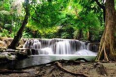 Queda da água em Tailândia Imagem de Stock