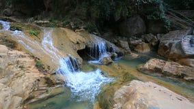 Queda da água na floresta vídeos de arquivo