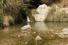 Queda da água no gedi Israel do ein Imagens de Stock Royalty Free