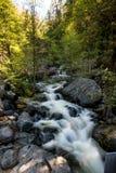 Queda da água no parque nacional de Yosemite, Califórnia Fotos de Stock Royalty Free