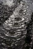 Queda da chuva Imagens de Stock