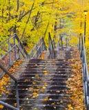 Queda da escada Fotografia de Stock