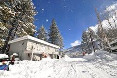 Queda da neve Foto de Stock