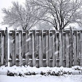 Queda da neve Fotos de Stock