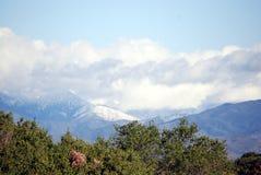 Queda da neve nos montes Imagem de Stock Royalty Free
