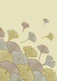 Queda das folhas Foto de Stock