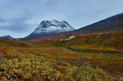 Queda de Gronelândia Foto de Stock