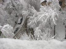 Queda de neve, árvores na neve, arquitetura da cidade do inverno Fotos de Stock