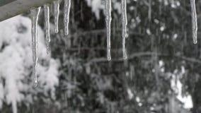 Queda de neve atrás dos sincelos que aderem-se para dirigir na tempestade da neve video estoque
