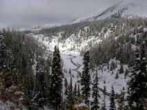 Queda de neve de noite Foto de Stock Royalty Free