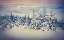 Queda de neve dos contos de fadas em montanhas do inverno Imagens de Stock