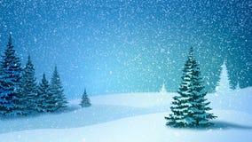 Queda de neve, neve e abeto cobertos com a geada e a neve na floresta da noite no inverno vídeos de arquivo