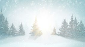 Queda de neve e abeto cobertos com a geada e a neve na floresta da noite no inverno Gráfico dado laços do movimento vídeos de arquivo