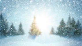 Queda de neve e abeto cobertos com a geada e a neve na floresta da noite no inverno Gráfico dado laços do movimento filme
