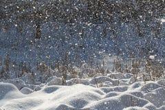 Queda de neve e luz solar Imagens de Stock