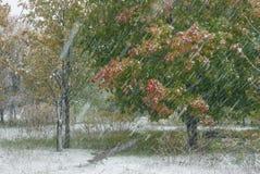 Queda de neve forte do outono Foto de Stock
