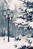 Queda de neve na cidade Fotografia de Stock Royalty Free