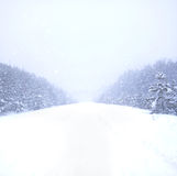 Queda de neve na maneira Fotografia de Stock Royalty Free