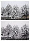 Queda de neve na vila Árvores no tempo de inverno Colagem 2 imagens Imagem de Stock Royalty Free