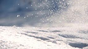 Queda de neve no inverno na floresta video estoque
