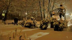 Queda de neve no parque foto de stock