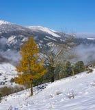 Queda de neve no parque natural de Aizkorri-Aratz e na cidade de Zegama, país Basque Foto de Stock