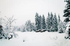 Queda de neve nos cumes italianos Imagens de Stock Royalty Free