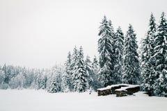 Queda de neve nos cumes italianos Fotos de Stock