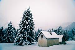 Queda de neve nos cumes italianos Imagem de Stock
