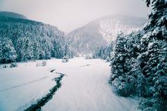 Queda de neve nos cumes italianos Imagens de Stock