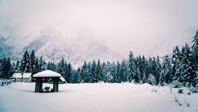Queda de neve nos cumes italianos Foto de Stock