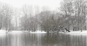 Queda de neve sobre o lago video estoque