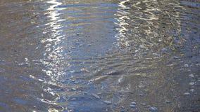 Queda de pedra na água do lago com reflexões da árvore filme