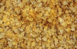 Queda do ouro Imagem de Stock