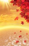 Queda do outono Foto de Stock