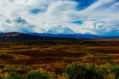 Queda do parque nacional de Denali Foto de Stock Royalty Free