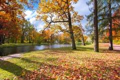 Queda dourada do outono no parque de Alexander, Tsarskoe Selo Pushkin St Petersburg, Rússia fotografia de stock royalty free