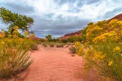 A queda dramática das nuvens colore a paisagem de Utá Imagens de Stock