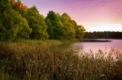 Queda e lago Imagem de Stock