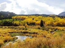 Queda em Colorado Fotografia de Stock Royalty Free