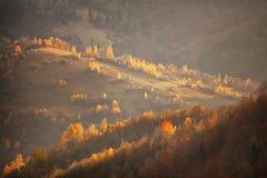 Queda em montes da montanha Cena de outubro Fotografia de Stock