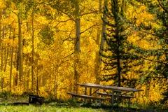 Queda em Steamboat Springs Colorado Imagens de Stock