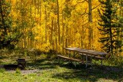 Queda em Steamboat Springs Colorado Fotografia de Stock Royalty Free