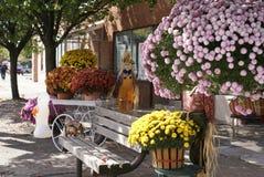Queda em Wyoming ocidental Pensilvânia Imagem de Stock Royalty Free