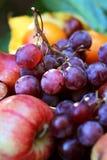 A queda frutifica alimento da colheita das maçãs das uvas do outono, saúde Fotografia de Stock