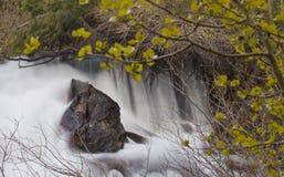 Queda isolado da água Imagem de Stock Royalty Free