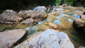 Queda maravilhosa da água na floresta vídeos de arquivo