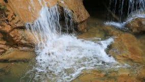 Queda maravilhosa da água na floresta video estoque
