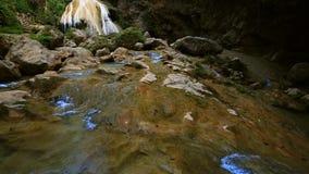 Queda maravilhosa da água na floresta filme