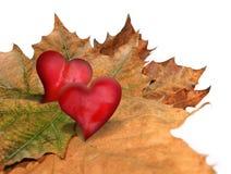 Queda no amor Imagens de Stock Royalty Free